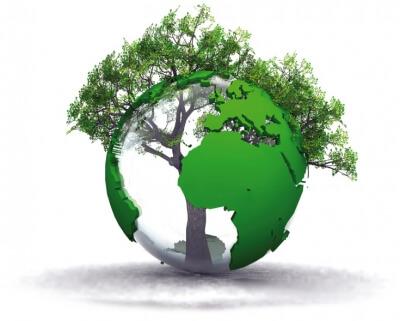 Ecologia e ambiente
